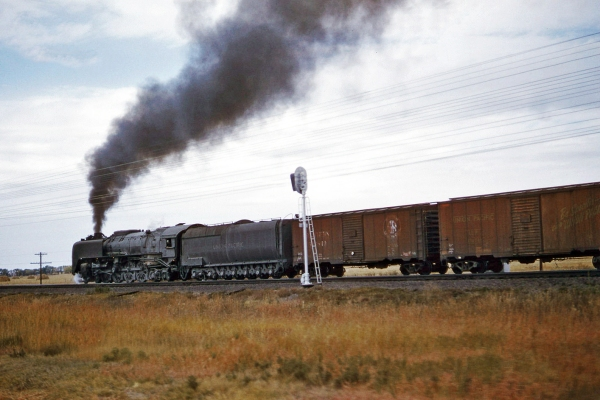 Umion Pacific Northern 830 hustles an eastbound freight near North Platte, NE in early 1958.